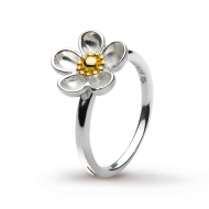Blossom Wood Rose Large Gold Ring by Kit Heath in Sterling Silver with 18ct Gold Plated Detail