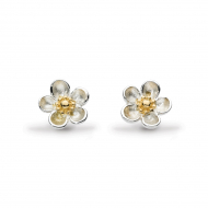 Blossom Wood Rose Gold Stud Earrings by Kit Heath in Sterling Silver with 18ct Gold Plated Detail